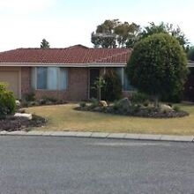 Easy Care 3 Bedroom House in Joondalup Joondalup Joondalup Area Preview