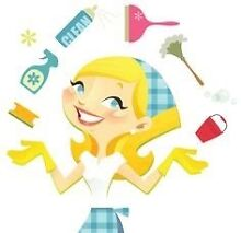Eco Care Cleaning (Immaculate Regular Clean/ Guaranteed Bond Clean) Crafers Adelaide Hills Preview