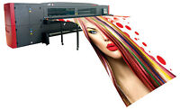 "Large format printing -Up to 126"" Width"