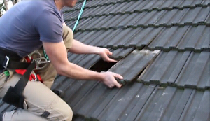 Roof Leaking? Call now for same day service! Endeavour Hills Casey Area Preview