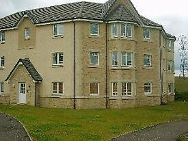 Modern Spacious 1 Bed Fully Furnished Flat for Rent in Duloch
