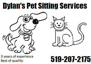 Pet Sitting Services 3+ years of experience