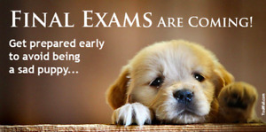 Image result for final exams coming""