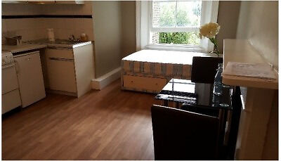 Spacious Double Studio close to Hyde Park Zone 2