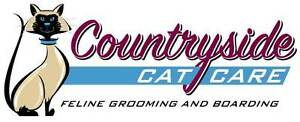 Professional Feline Grooming and Boarding