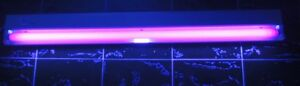 Philips 48 Inch F40T12  Black Light Tube