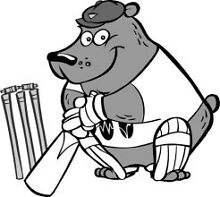 CRICKET PLAYERS Matraville Eastern Suburbs Preview
