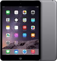 iPad Mini 2 32 Go Wifi