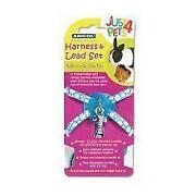 Rabbit Harness