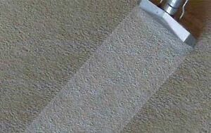 ARV carpet steam cleaning Dandenong Greater Dandenong Preview
