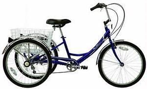 """Adult trike (fiori 15"""") retail $900.00 less than 12hrs of use!"""