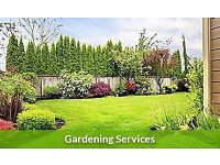 Professional Gardening Maintenance Service / Window Cleaning Service *Free Quote*
