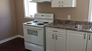 Looking for a fourth roommate for September 2017!! Kitchener / Waterloo Kitchener Area image 5