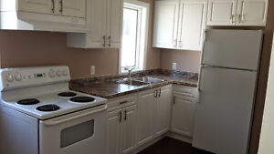 Looking for a fourth roommate for September 2017!! Kitchener / Waterloo Kitchener Area image 4