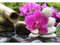 Ancient Chinese Full Body Massage,Traditional Thai Massage. Pain Relief, Slimming Massage,Hot Stone