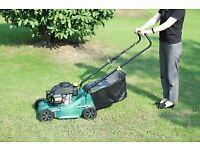 Garden cleaning service