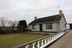 Lovely house in Newry to let.