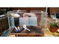 Large acrylic Perspex Fish tank aquarium paludarium terrarium 4ft