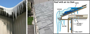 Offering Gutter/Eavestrough Cleaning For Cash. London Ontario image 2