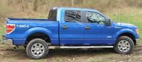 2012 Ford F-150 XL Pickup Truck