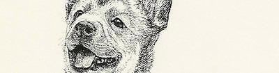 ART PRINT, NEW Australian Cattle Dog Blue Red Heeler drawing painting Good Dog!