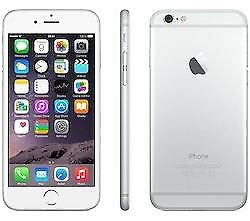 iPhone 6 6 iPhone 6 64GB in silver Unlocked - New battery