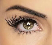 Eyelash Extensions PROMO by Liscenced Aesthetician