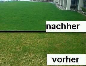 Rasen Vertikutieren Inkldüngernachsaat Jetzt In Bielefeld