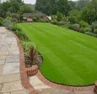 TREATING YOUR LAWN PROFESSIONALLY!