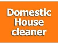 Domestic House Cleaner