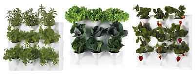 Orto verticale modulare pensile Minigarden x piante, aromatiche, fragole Vaso