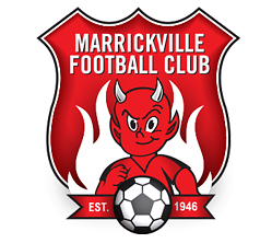 Players wanted for Sydney Inner West Soccer Team Marrickville Marrickville Area Preview