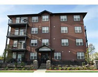 EXECUTIVE STYLE, RARE 3 BED CONDO