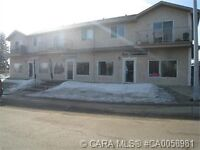 Sylvan Lake - Spacious  2 BR Apartment - large kitchen w. Island