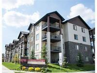 2 BEDROOM & 2 BATHROOM APPARTMENT FOR RENT IN BRIDLEWOOD