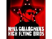 1 x TICKET FOR NOEL GALLAGHER'S HIGH FLYING BIRDS SAT 7TH JULY LONDON