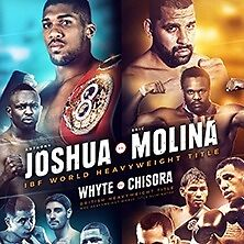 1 X ANTHONY JOSHUA V ERIC MOLINA TICKET MANCHESTER TOMORROW 10TH DECEMBER BLOCK 215 £100 COLLECTION