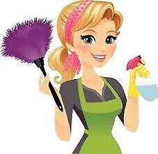 Affordable cleaning lady available!