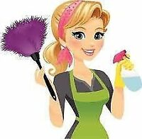 ** Professional House cleaning in Sussex and surrounding areas**