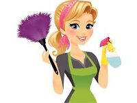 Domestic Cleaning service available