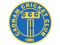 Cricketers wanted