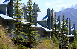 Lodgepole Townhome Wanted