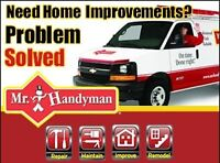 Mr. Handyman Technician