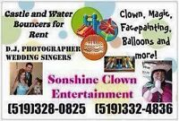 Bouncer house / Waterslide/Clown/Rentals