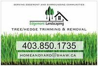 Northwest Hedge & Tree Service (without the big company cost)