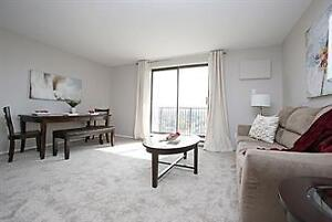 7th floor downtown living apartment in large building for rent