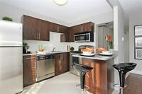 Newly Renovated big 1 Bedroom Apartment right Downtown!