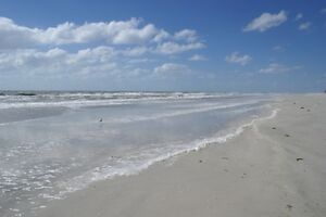 Beautiful Beach Condo - Indian Shores Florida