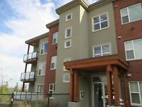 Academy Hill (UBCO) - Den For Rent