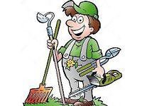 Garden service cleaning